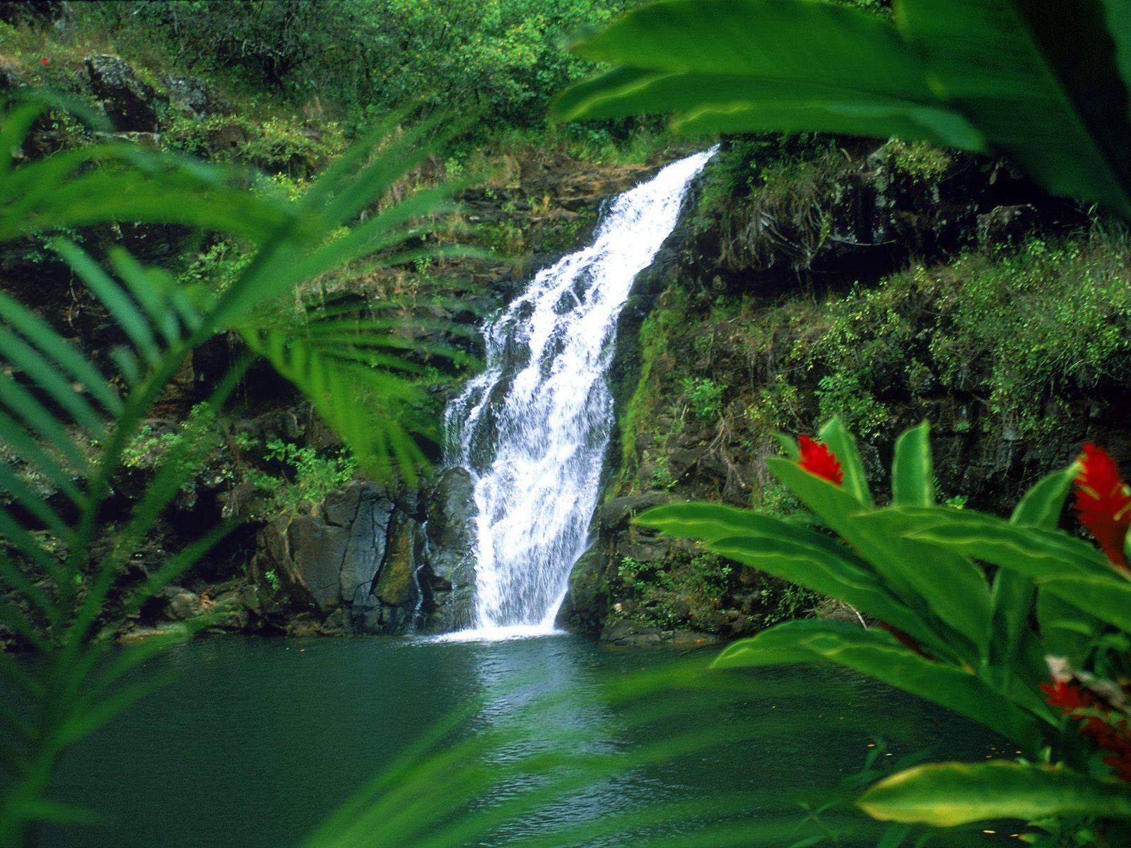 Home огонь изумруды водопады абик